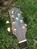 Blackbird headstock