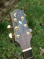 Blackbird headstock