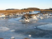 december-18-thicker-river-ice