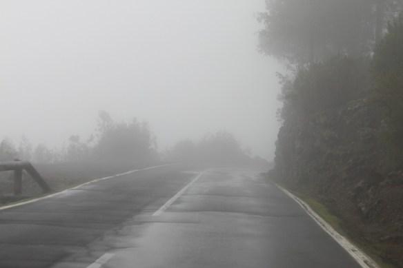 Ежики в тумане. Серпантины на дороге в Ла Оротава