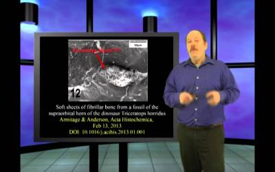 Santa's Camel – Genesis Week, Episode 28, season 2
