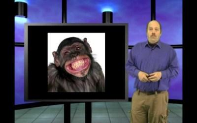 Walk like an ape? Genesis Week, episode 34, season 2 with Wazooloo/Ian Juby