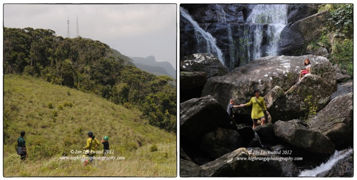 Exploring patanas and montane forest near the Ecolodge