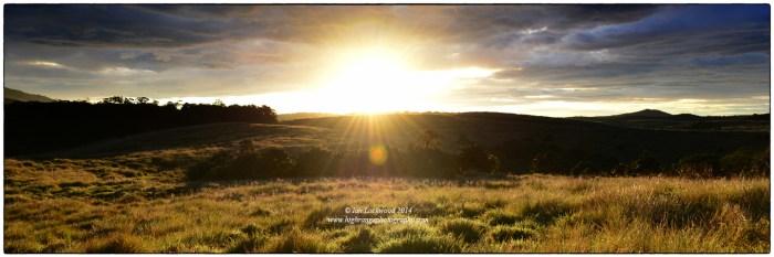 A parting sunrise over Horton Plains National Park. Taken near Mahaeliya.