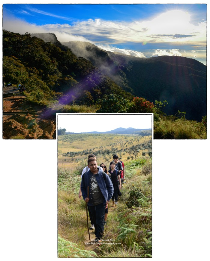 Early morning mist burning off above cloud forest at Little World's End. Trail to Kirigalpota passing through expansive patanas (grasslands).