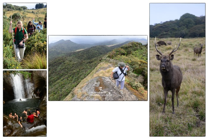 OSC group on the Kirigalpotta trail & Lanka Ella Falls (lower left).