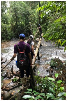 Crossing a stream on the way back from a remote home garden.