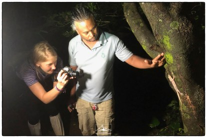DP1 student Alex photographs an endemic Knuckles or Dumbara Bent Toe Gecko (Cyrtodactylus soba) with the guidance of KC.