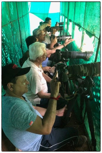 """Photographers from Pune in the """"Treepie"""" hide- a site on private property maintained by KV Eldhose on the edge of a patch of secondary forest at Thattekad."""