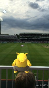 A Pokémon Displaying A Worrying Level Of Indifference To Cricket (with thanks to Xueyi for capturing the little fella)