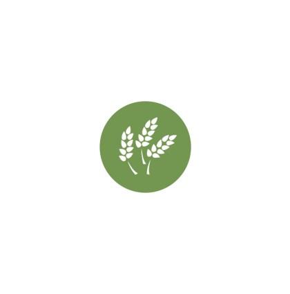 Jubilee | Branding + Web Design