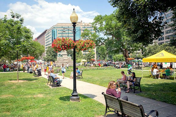 A photo of people enjoying a summer day in Farragut Park, located in the Farragut North Neighborhood of Washington D.C.
