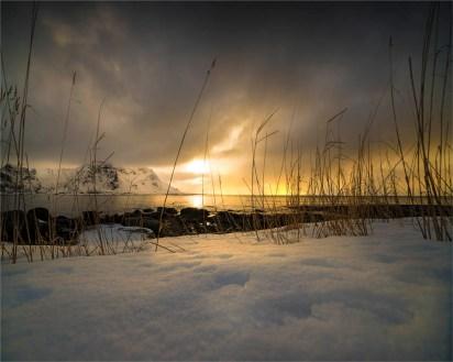 Vareidsundet-Lofoten-2016-NOR013-20x25