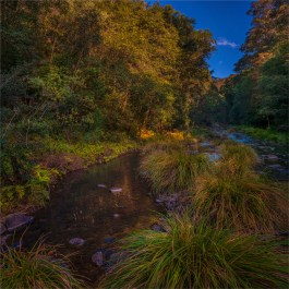 Killarny-Glen-QLD-0156-28x28