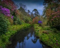 Mintern-Gardens-2017-ENG02677