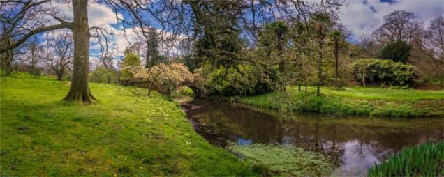 Mintern-Gardens-2017-ENG125-18x45