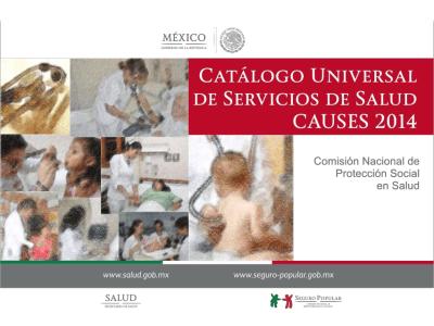 Catálogo Universal de Servicios de Salud, Seguro Popular, CAUSES 2014, pdf