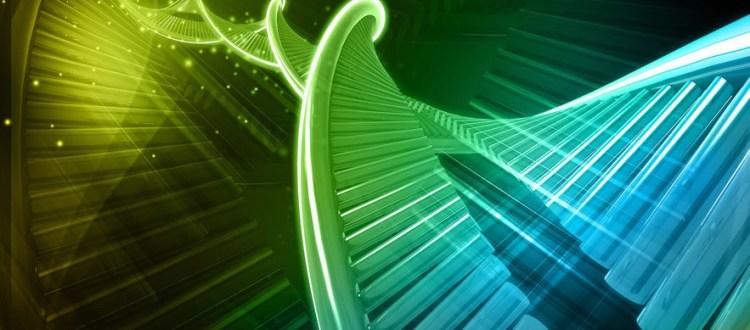 genética, ADN, información celular, código genético, herencia