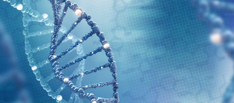 Galafold tiene un efecto positivo en pacientes con Fabry con mutaciones susceptibles, según un estudio