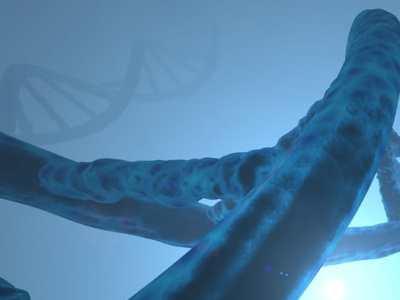 La FDA aprueba la solicitud de un nuevo fármaco en investigación para la terapia experimental de la enfermedad de Fabry