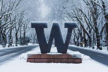 University of Washington Sign