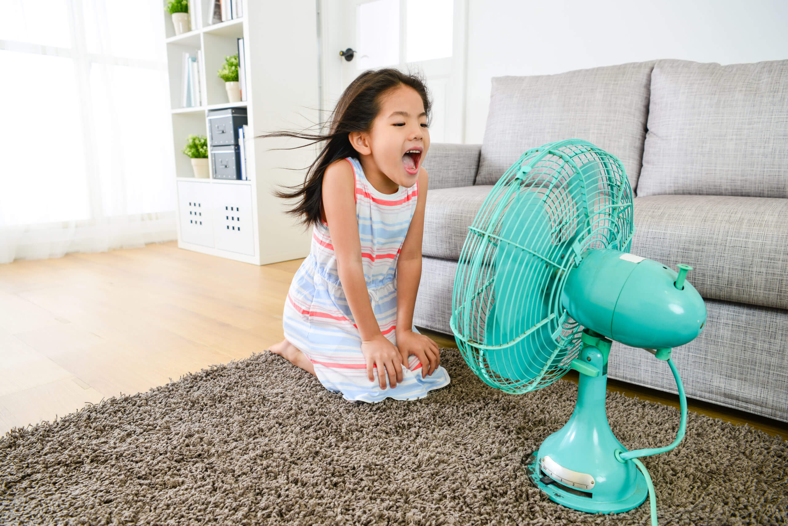 best whole-home ventilation system?
