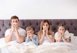 indoor summer allergies