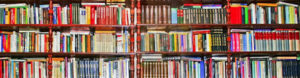 IAS preparation study materials- Toppers Most recommended Best books