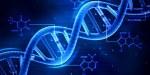 Les modifications de l'ADN dans la nature peuvent modifier radicalement les écosystèmes de manière i...