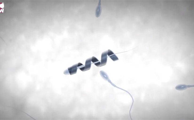 Spermbots, les robots qui propulsent les spermatozoïdes vers l'ovule