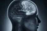 Miguel Benasayag : Cerveau augmenté, homme diminué