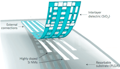 Illustration of the construction of a bioresorbable neural electrode array for ECoG and subdermal EEG measurements. A photolithographically patterned, n-doped silicon nanomaterial (300 nm thick) is used for electrodes and interconnects. A 100 nm thick film of silicon dioxide and a foil of PLGA (30 nm thick) serve as a bioresorbable encapsulating layer and substrate, respectively. The device connects to an external data acquisition system through a conductive film interfaced to the Si nm interconnects at contact pads at the edge. (credit: Ki Jun Yu et al./Nature Materials))