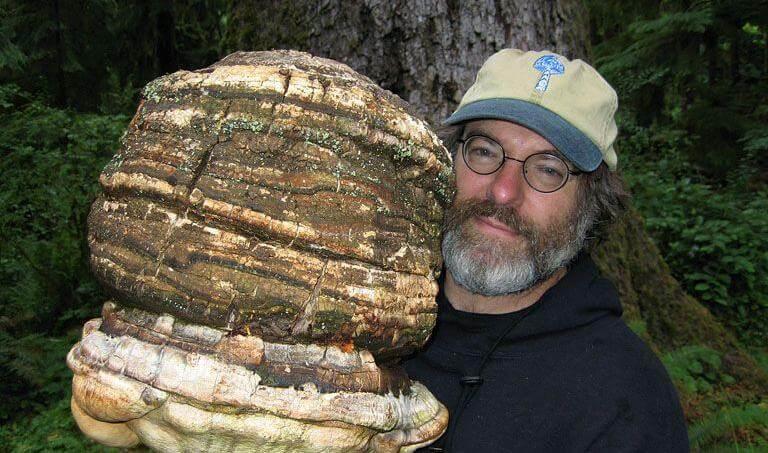 Le brevet qui dérange Monsanto : Paul Stamets présente 6 manières de changer le monde avec les champignons