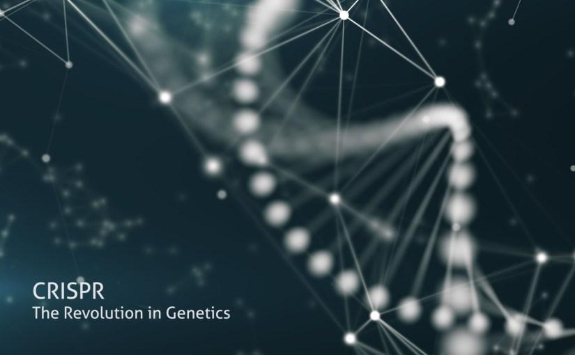 L'édition génétique par CRISPR pourrait induire des centaines de mutations imprévues dans l'ADN