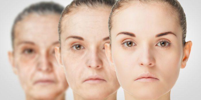 longévité immortalité transhumanisme h+ longévité humaine temps immortalité jeune vieillissement