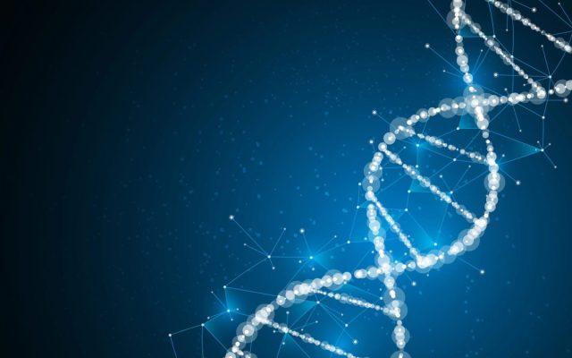 Les scientifiques chinois déclarent avoir trouvé une alternative plus sûre à l'outil CRISPR