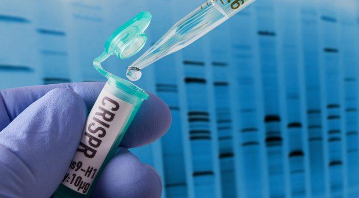 Recherche CRISPR en laboratoire