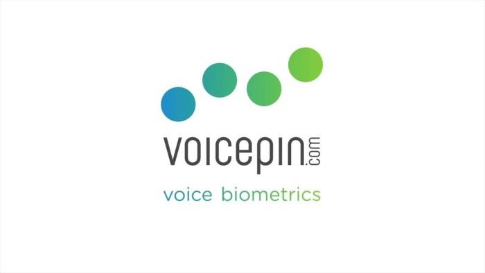 VoicePIN logo
