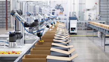 automatisation emplois