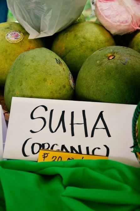 ibaan municipal agriculture office organic products mayor danny toreja ethel joy caiga salazar 15