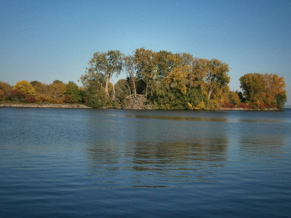Fall Pictures in WI- 2015 (1/4)
