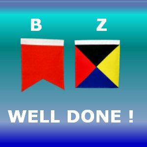 Bravo Zulu Signal Flag meaning