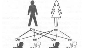 Quienes son los candidatos a  revisar sus genes? Parte 1