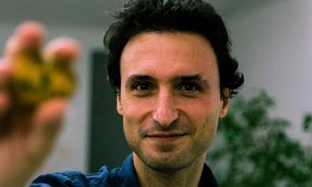 Manuel Asín, nuevo director artístico de Punto de Vista