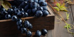 تعرف على فوائد العنب الأسود وأضراره للأطفال