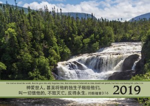 Calendar 2019 cover Chinese