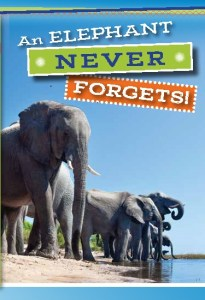 Tract - ElephantNeverForgets Page_1 - Copy