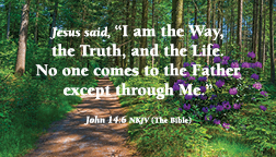 John146_3.5x2 Message card 2021 forestpath front