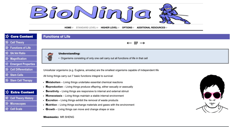 Preview of BioNinja Website