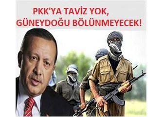 AKP'nin Kürt açılımı ve gizliden Güneydoğu'yu bölme planları